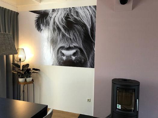 Poster van een Schotse Hooglander aan de muur