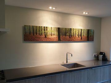 Panorama foto bossen geprint op aluminium dibon in de keuken
