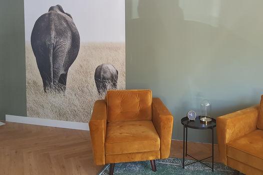 Foto van olifant op behang als wanddecoratie