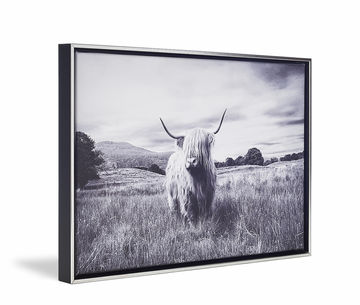 Canvas De Skew Float Blacksilver Highlander