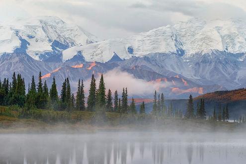 Werkaandemuur 185348 Denali Alaska Menno Schaefer
