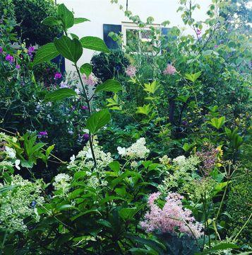 Landelijk wonen weelderige tuin Werk aan de Muur