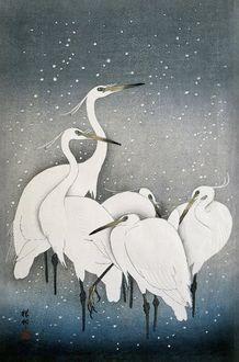 Werkaande Muur 827450 Kraanvogels een oude Japanse meester in prachtige kleuren Affect Fotografie