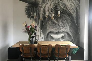 Schotse hooglander behang werk aan de muur